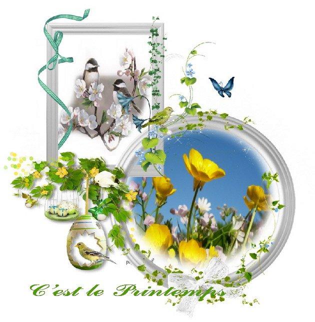 Montage pour le printemps (pour blog)