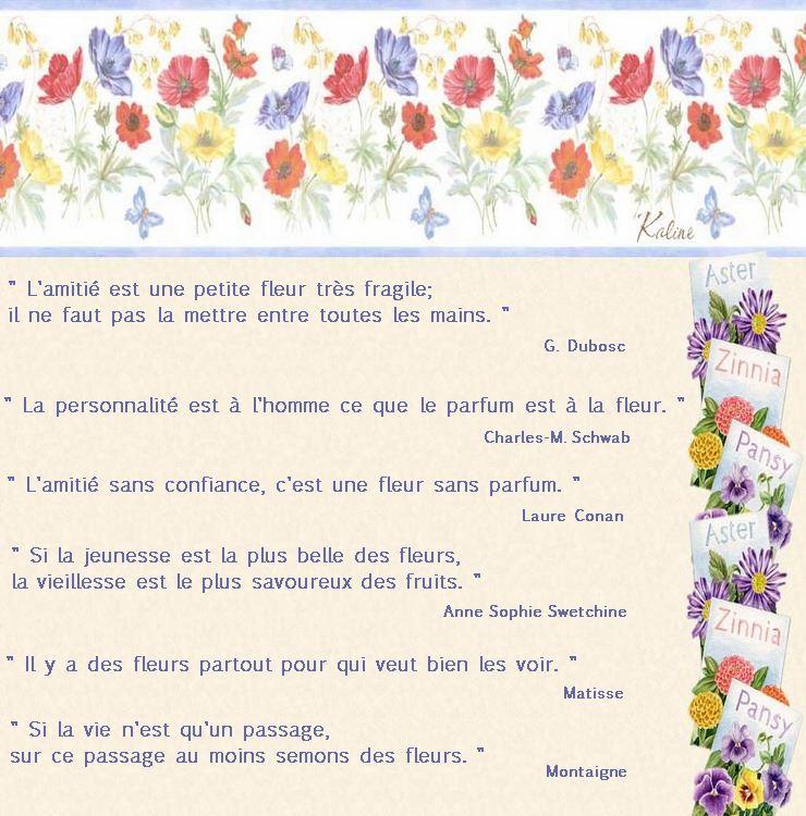 cotejardin pour blog 1