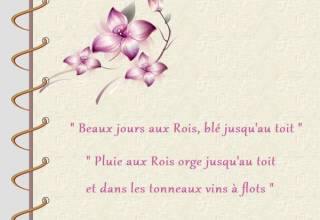 citation du 6 janvier