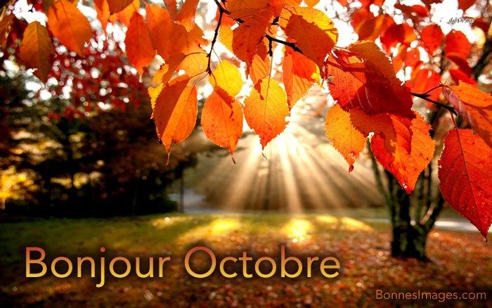 BonnesImages-octobre_001 (1)