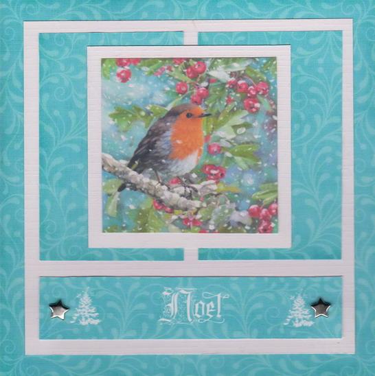 carte oiseau 001  bis