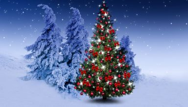 winter-rozhdestvo-shary-christmas-tree-happy-ukrasheniia-e-9